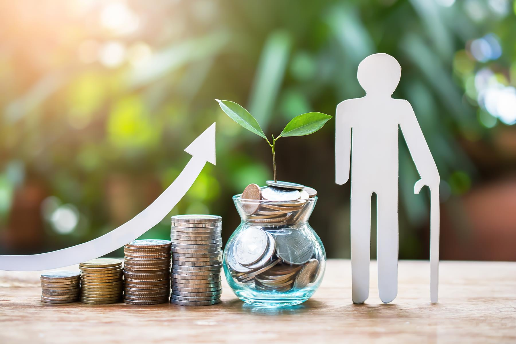 pracownicze plany kapitałowe 2019 2020